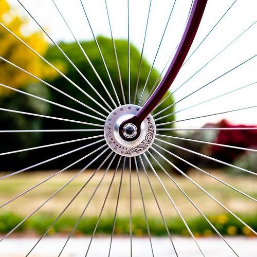 bicycle-rdhunyz1-93826-500-500